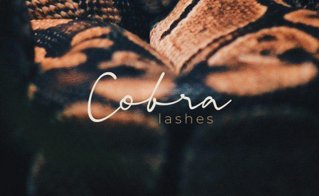 Cobra - Concepting voor branding